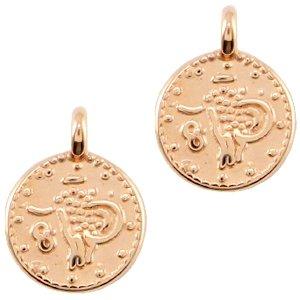 Deze bedel in de vorm van een muntje van designer quality is te koop bij kralenwinkel Limited Edition in Den Haag in de kleur rose.