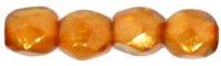 De glazen Fire Polished 3mm beads worden veel gebruikt in sieraden patronen en zijn te koop bij kralenwinkel Limited Edition in Den Haag in de kleur 69253CR.