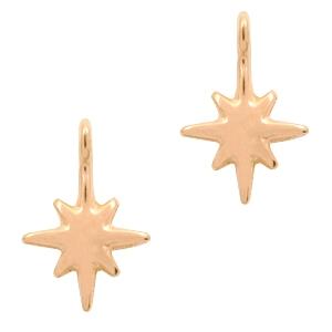 Deze bedel van Designer Quality in de vorm van een ster zijn te koop bij kralenwinkel Limited Edition in Den Haag.