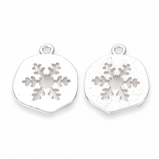Deze munt met sneeuwvlok is te koop bij kralenwinkel Limited Edition in Den Haag in de kleur zilver.